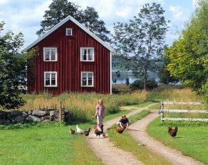 Frijord vill verka för en levande landsbyggd och skapa ett socialt och miljömässigt hållbart boende för sina medlemmar