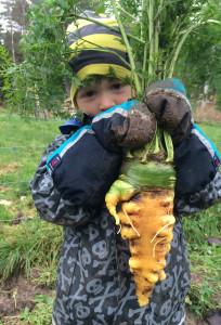 Noel hittade den här stora moroten.