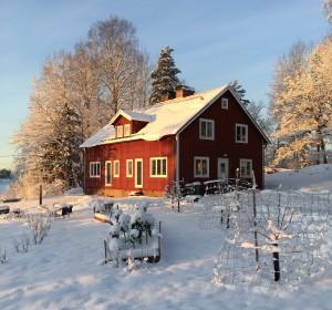 Vinter på Gamla Skolan